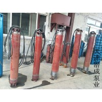 QJ深井潜水泵价格-潜水深井泵-天津深井泵厂家